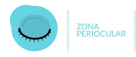Partes del Ojo: Zona Periocular